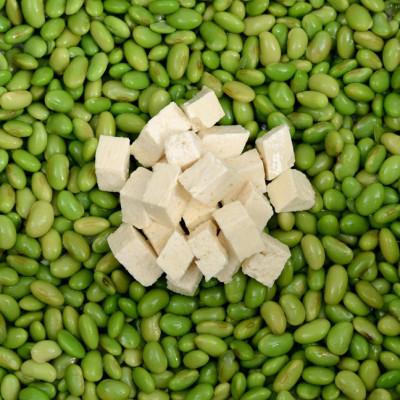 Soy vs. Tofu
